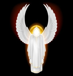 White angel on black vector