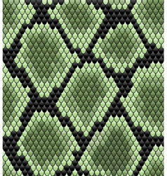 Green seamless snake skin pattern vector image