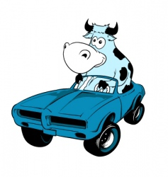 cow driving a car mascot vector image