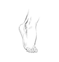 hand drawn sketch feet vector image vector image