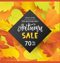 autumn sale banner template with bright leaves vector image