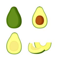 Avocado whole fruit half and slices vector