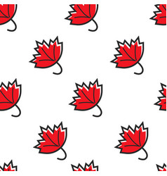 canadian symbol maple leaf seamless pattern vector image