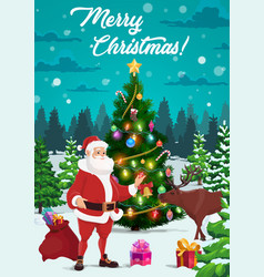 christmas tree with santa xmas gifts and reindeer vector image