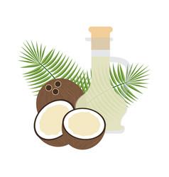 coconut organic oil in glass bottle vector image