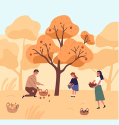 Cute family picking apples in garden flat vector