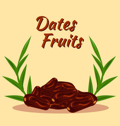 dates fruit 3 vector image