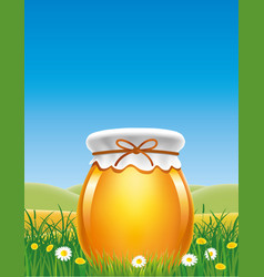 Jar of honey in a meadow with flowers vector