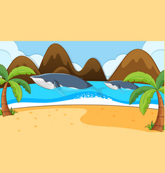 Scene with two whales in ocean vector