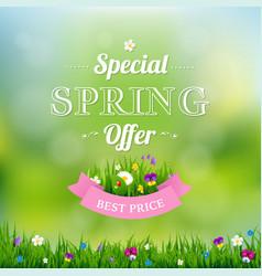 spring offer banner vector image