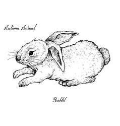Autumn animal hand drawn bunny rabbit vector
