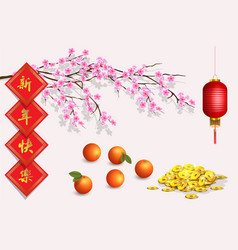 Design elements for chinese lunar new year vector
