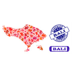 Handmade composition of map of bali island and vector