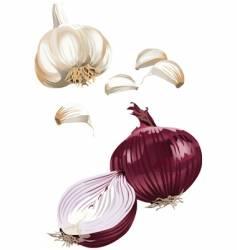 Onion garlic vector