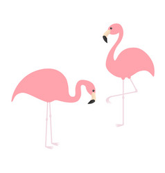 two pink flamingo icon set exotic tropical bird vector image