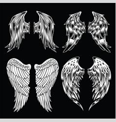 Wings logo wing brand and logotype wing vector