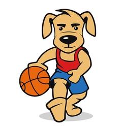 dog basketball vector image
