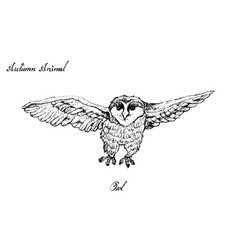 Autumn animal hand drawn owl isolated on vector