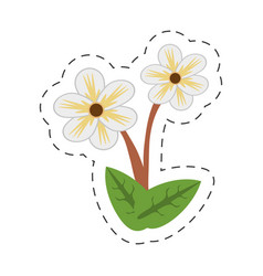 Cartoon jasmine flower image vector