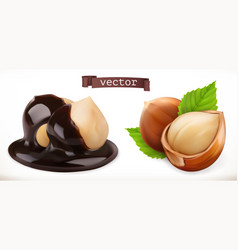 hazelnut in chocolate 3d realistic icon vector image