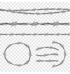 Metal steel barbed wire with thorns or spikes vector