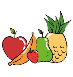 fruits food organic vector image vector image
