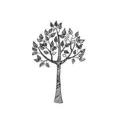hand drawn sketch of tree in black and white color vector image