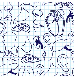 Seamless background with sketches of human organs vector image vector image