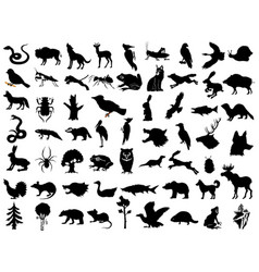 Big set silhouettes animals plants and vector