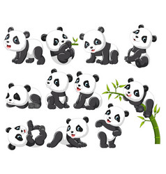 collection happy panda with various posing vector image