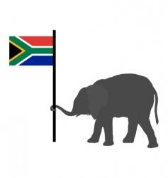 elephant baby vector image