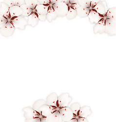 Frame with sakura flowers blossom vector