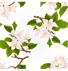 Seamless texture apple tree branch with flowers vector