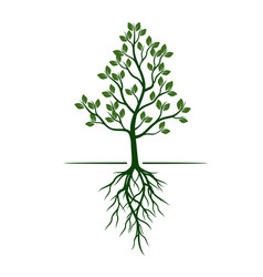 white trees with roots on green background vector image