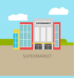 colored supermarket building vector image