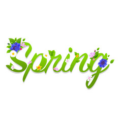 spring text vector image vector image