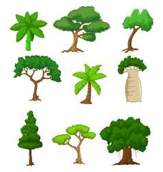 tree cartoon collections vector image vector image