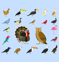 big set tropical domestic and other birds vector image
