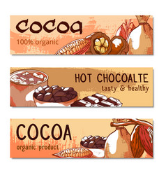 cococa beans hand drawn banners vector image
