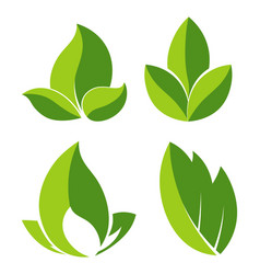 grean leaves as logotypes for eco companies set vector image