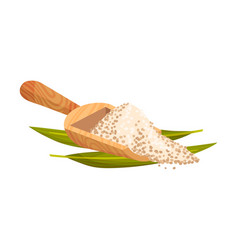 Refined brown sugar rested in wooden spoon with vector