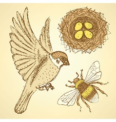 Sketch set with sparrow bee and nest in vintage vector