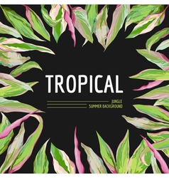 Tropical palm leaves background graphic vector