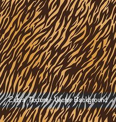 Zebra texture background vector