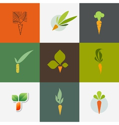Carrot Set of decorative design elements vector image