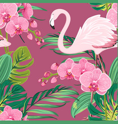 orchid flower flamingo tropical leaves pattern vector image