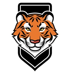 tiger calm shield vector image vector image