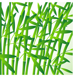 chinese or japanese bamboo grass oriental vector image