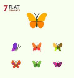 Flat moth set of moth summer insect archippus vector