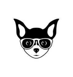 Portrait of chihuahua dog in glasses vector
